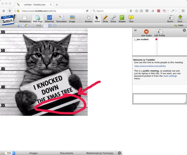 Twiddla whiteboard with cat meme image