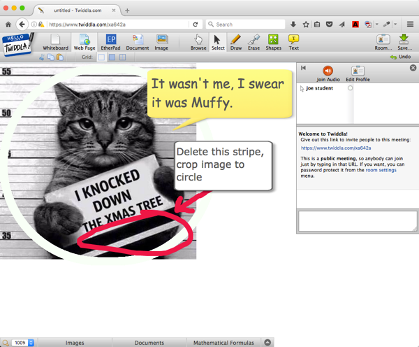 Twiddla whiteboard with cat meme image and text added