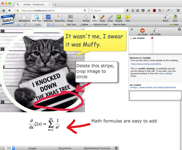 Twiddla whiteboard, cat meme image, text boxes, and math formula