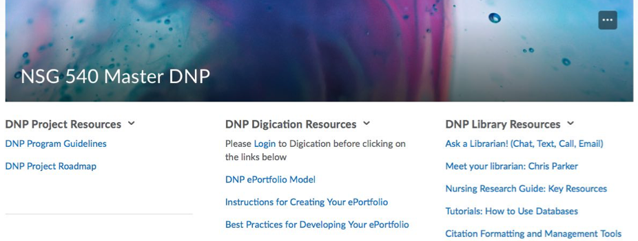 Widgets listing resources for DNP Project, Digication, and Library