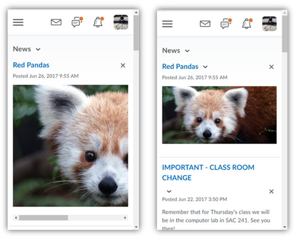 Side by side comparison of static image and responsive image in D2L on mobile device